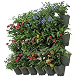 SELF Watering Indoor Outdoor Vertical Wall Hangers with Pots Included Wall Plant Hangers Each Wall Mounted Hanging Pot has 3 Pockets 36 Total Pockets in This Set Self Watering Planter 3 Year Warranty (Color: Green, Tamaño: 12 Pack (36 Pockets))
