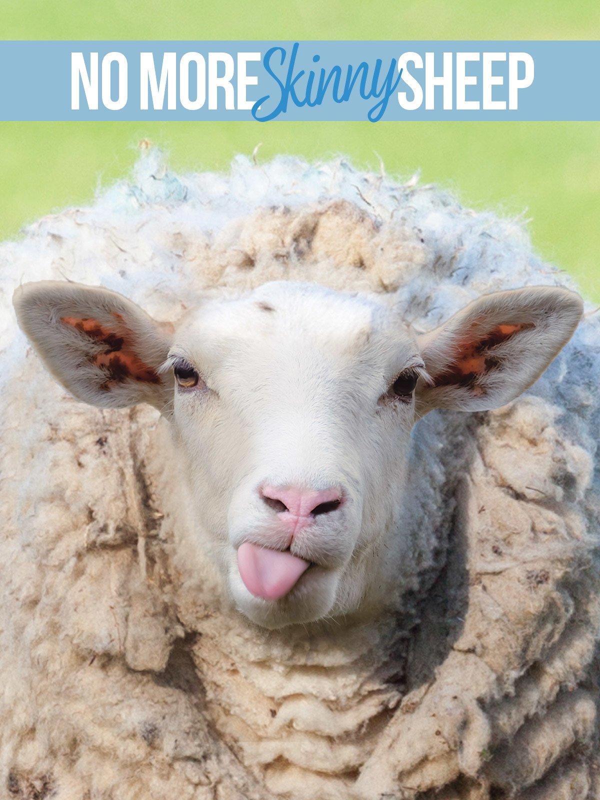 No More Skinny Sheep on Amazon Prime Video UK