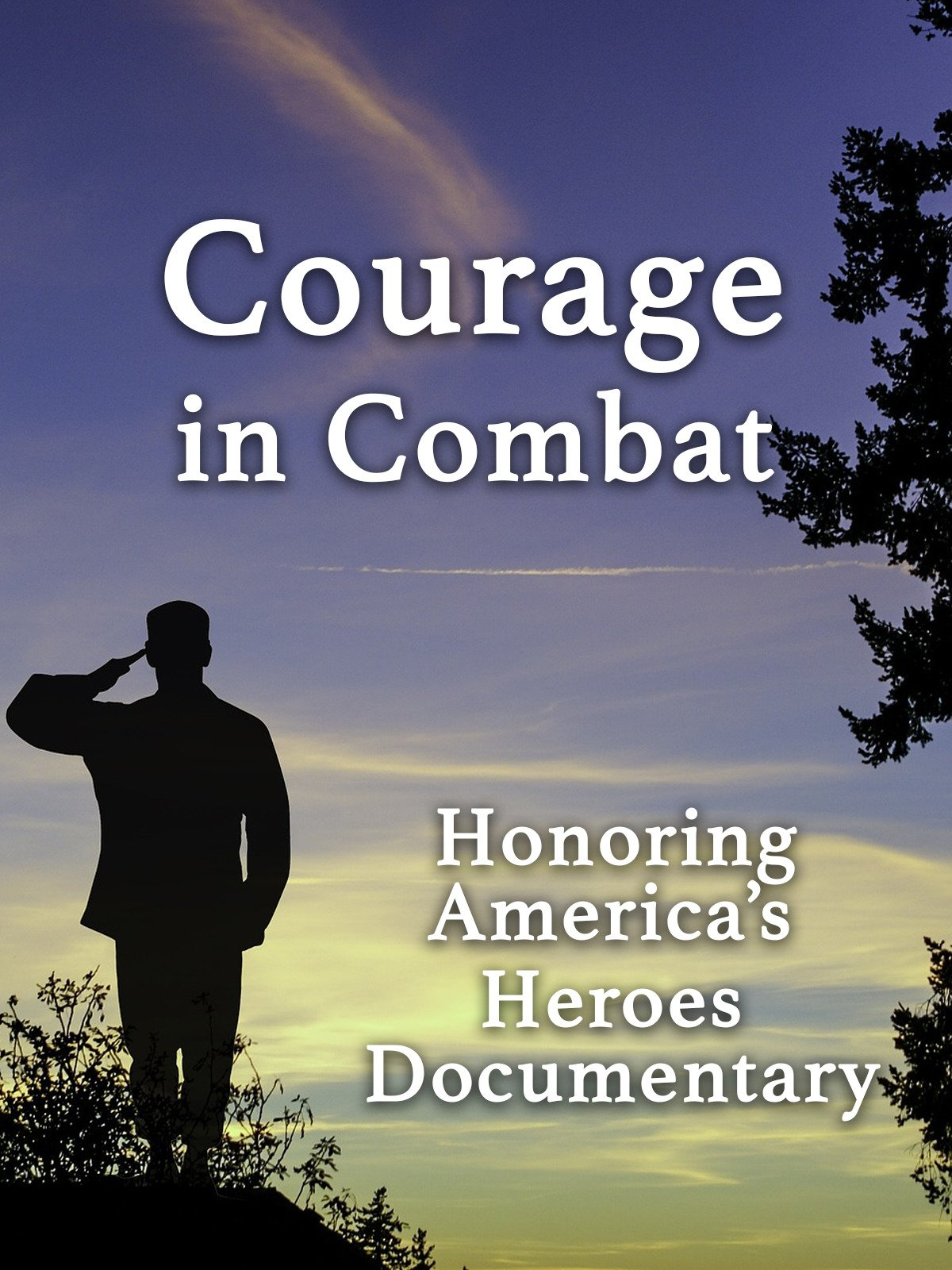 Courage in Combat Honoring America's Heroes Documentary