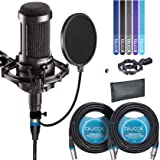 Audio-Technica AT2035 Large Diaphragm Studio Cardoid Condenser Microphone Bundle with Shock Mount, Blucoil Pop Filter, 2 20-Ft XLR Cable and 5-Pack of Cable  Ties (Color: Black, Tamaño: AT2035 Home & Studio Recording Bundle)