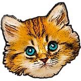 Kittenistry
