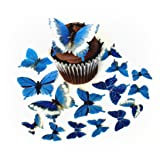 Assorted Blue Wafer Paper Butterflies 5 Different Sizes ranging from 7/8 Inch to 2 Inch for Decorating Desserts Pack of 24