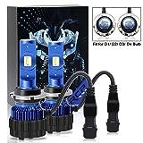 RCP LEDD- LED Headlight Bulbs D1/D2/D3/D4 Model Super White 8000LM 6000K(1 Pair) - 2 Year Warranty (Color: 6000K, Tamaño: LED D1/ D2/ D3/ D4)