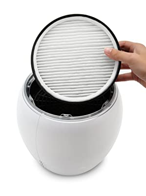 Holmes HAP600-U HEPA-Type Egg Air Purifier, Permanent Filter via Amazon