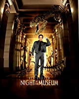 Night at the Museum [HD]