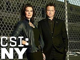 CSI: NY, Season 09