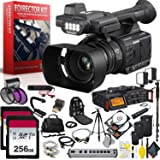 Panasonic AG-AC30 Full HD Camcorder with Touch Panel LCD Viewscreen and Built-in LED Light Filmmaker Kit Bundle Kit (Color: Pro Director Kit, Tamaño: AC30)