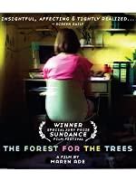 The Forest for the Trees (English Subtitled)