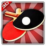Real Ping Pong -