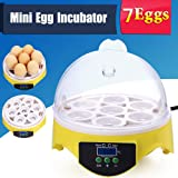 Automatic Mini Digital Clear 7 Egg Incubator Hatcher Egg Turning Temperature Control[US STOCK] (Tamaño: 7 Egg Incubator)