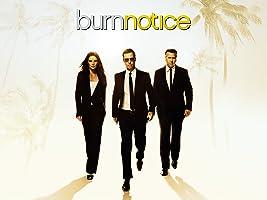 Burn Notice - Staffel 6