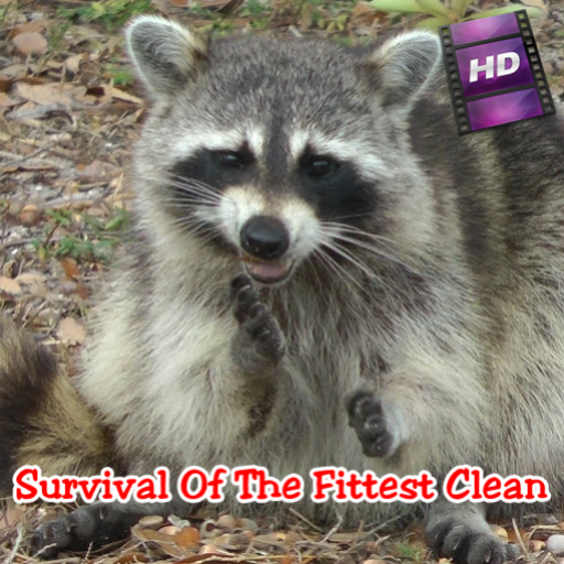 Survival Of The Fittest Clean