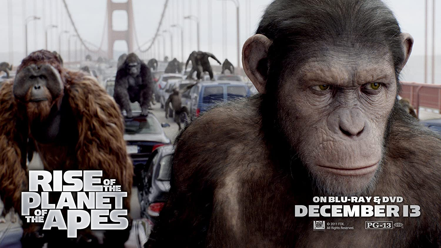 essay planet of the apes