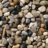 Exotic Pebbles PMS0510 Polished Gravel, Mixed, 5 Pounds, 3/8-Inch - Pack of 4