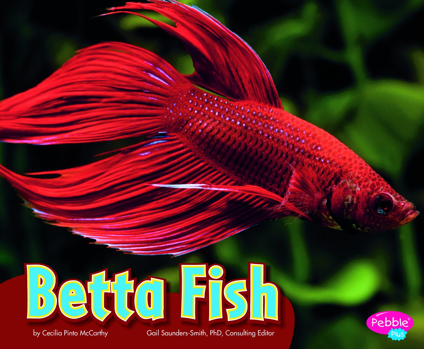 Reviews: Betta Fish (Colorful World of Animals)- Children\'s Books On ...