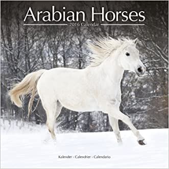 Arabian Horses Calendar - 2016 Wall calendars - Only Arabian Horses - Animal Calendar - Monthly Wall Calendar by Avonside