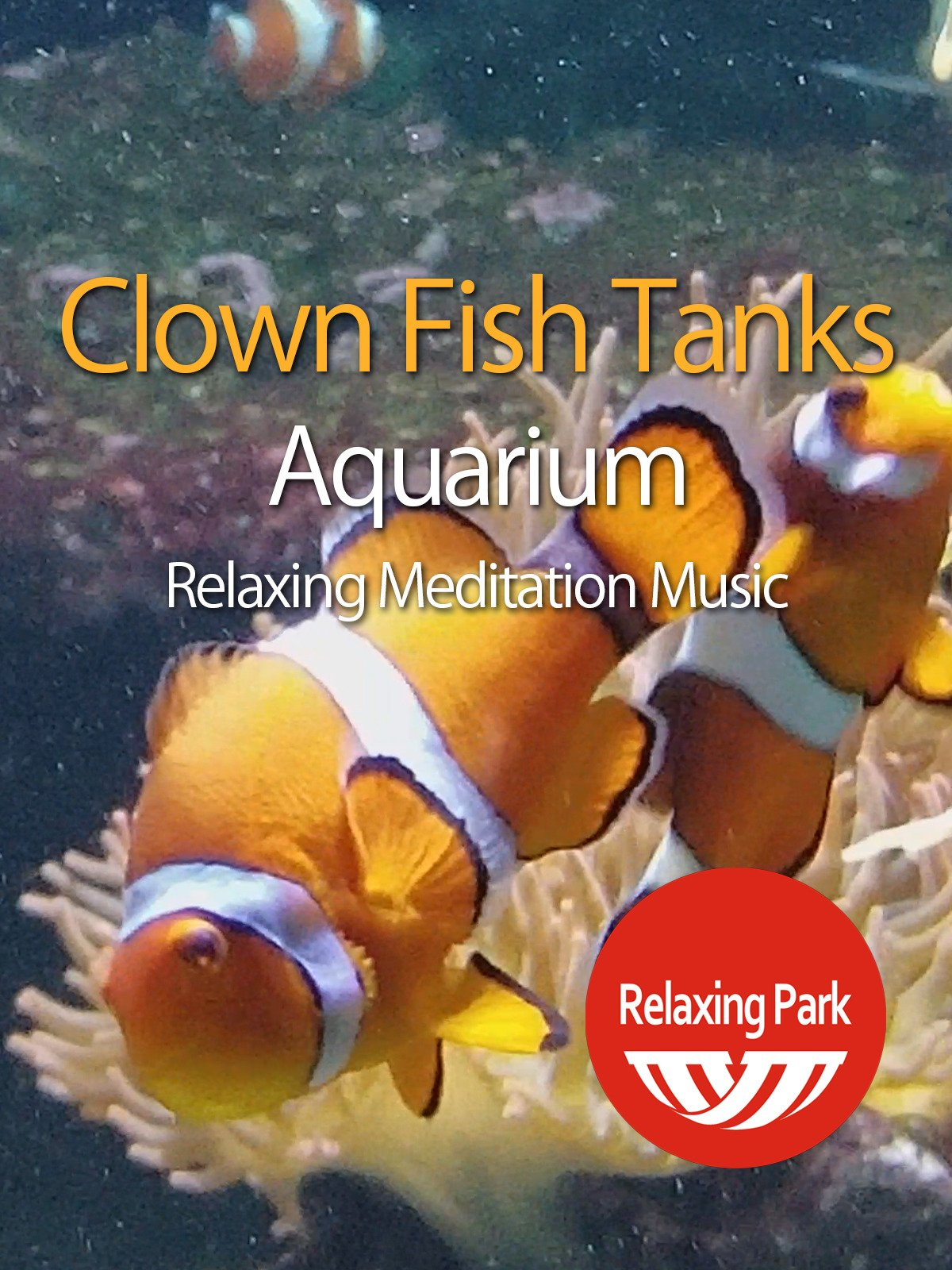 Clown Fish Tanks Aquarium with Relaxing Meditation Music