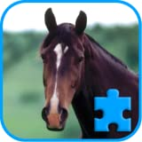 Fancy Jigsaw: horses