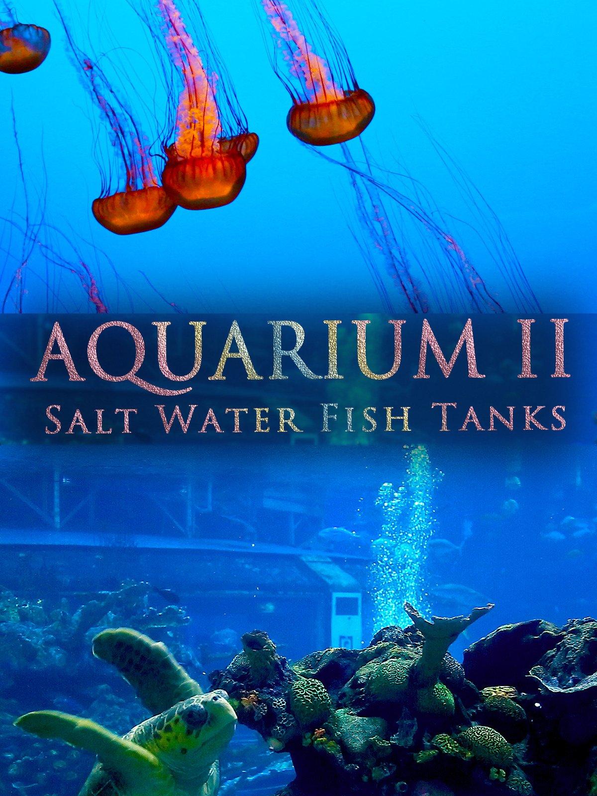 Aquarium II (Salt Water Fish Tanks)