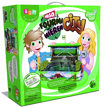Bsm - Ws 22 N - Jeu Scientifique - Mega Fourmi City