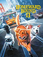 Homeward Bound II: Lost In San Francisco