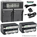 Kastar LCD Dual Smart Fast Charger & 2 x Battery for Sony NP-F770 NP-F750 and CCD-RV100 CCD-RV200 CCD-SC9 CCD-TR1 CCD-TR940 CCD-TR917 Camera CN-126 CN-160 CN-216 CN-304 YN 300 VL600 LED Video Light (Tamaño: 2 batteries + 1 dual fast charger)