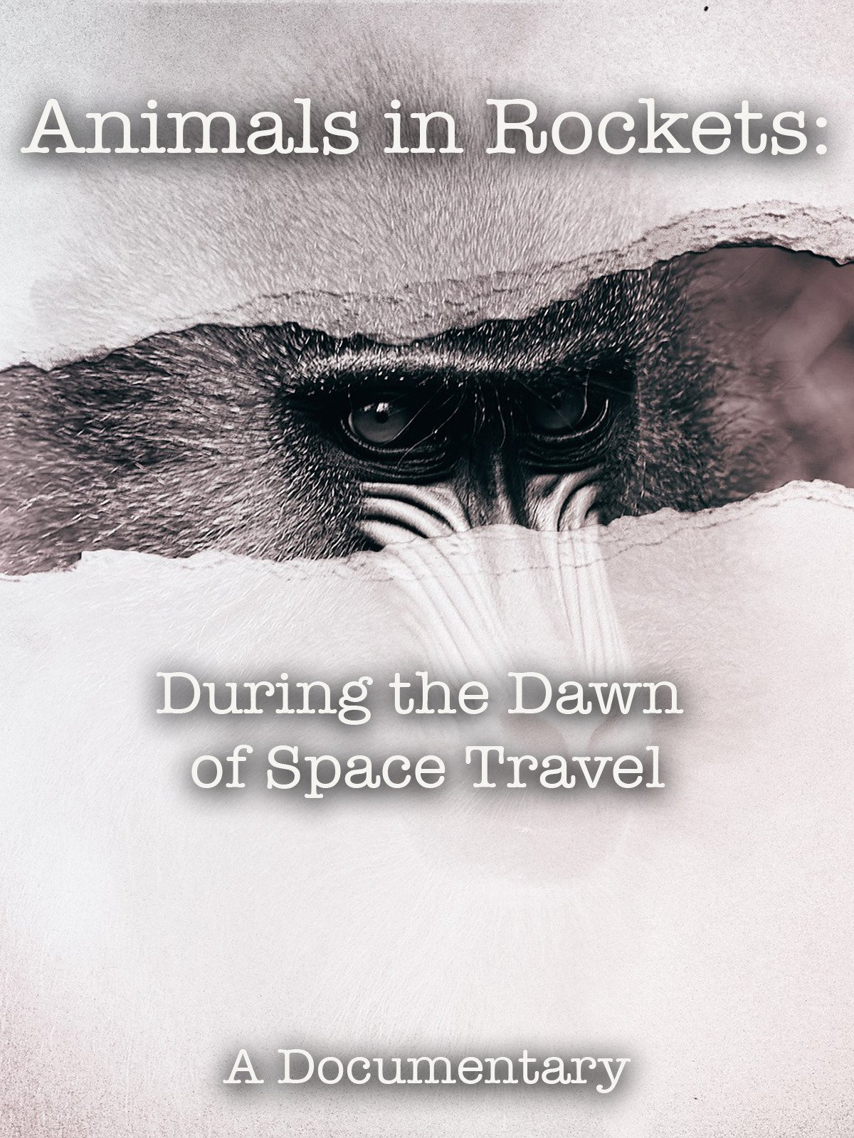 Animals in Rockets: During the Dawn of Space Travel A Documentary