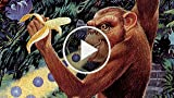 Classic Game Room - TOKI: GOING APE SPIT Review For...