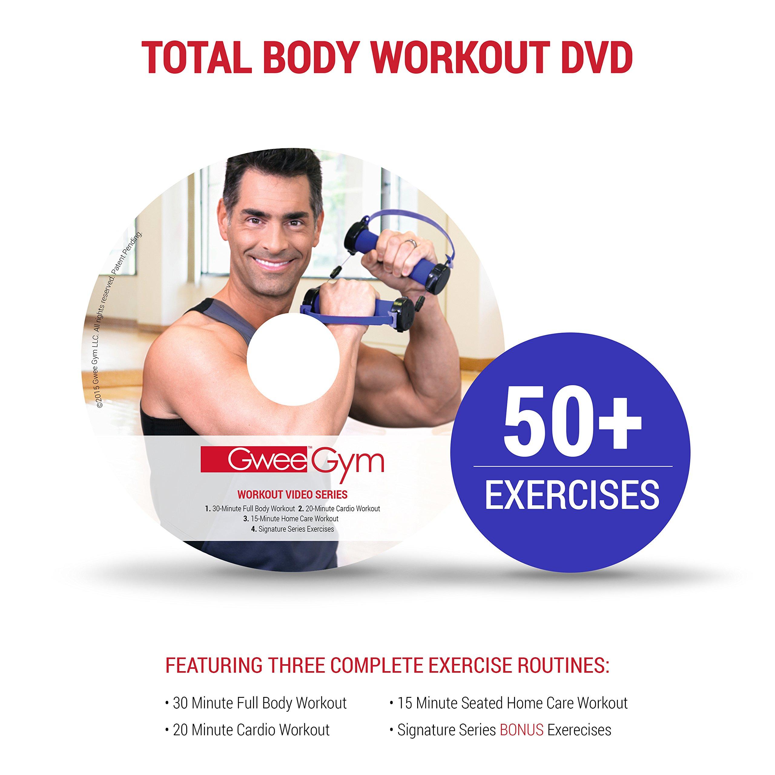 Gwee Body Workout DVD