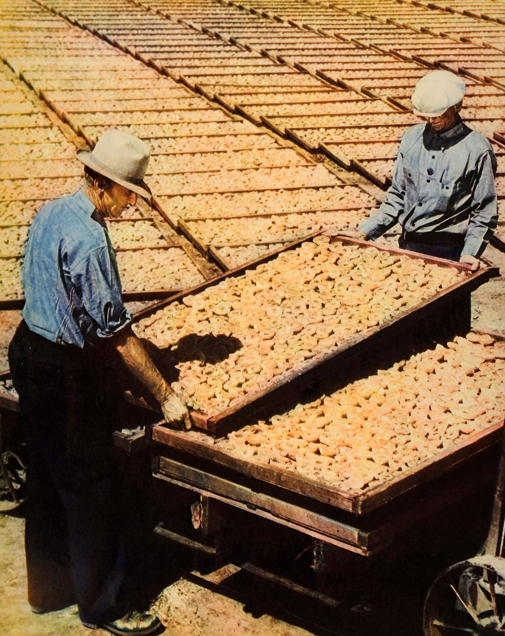 1938 Print Merced Peaches