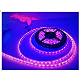 LEDeXTREME (UV, Ultra Violet) Powerful SMD5050 IP68 Waterproof 100% Submersible Outdoor 16.4 ft./5 Meter 300 LED Lights (per Reel) LED Light Strips Fishing, Deck Rub Rail Lighting, Pools, Saltwater (Color: Ultraviolet)