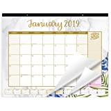 bloom daily planners 2019 Calendar Year Desk or Wall Calendar (January 2019 Through December 2019) - 21