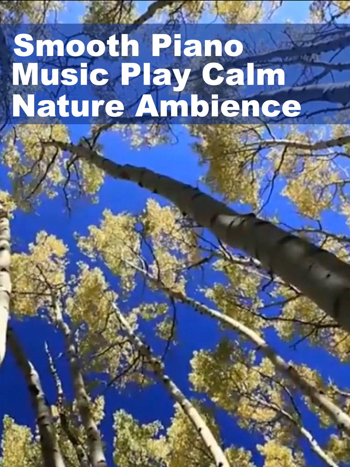 Smooth Piano Music Play Calm Nature Ambience on Amazon Prime Instant Video UK