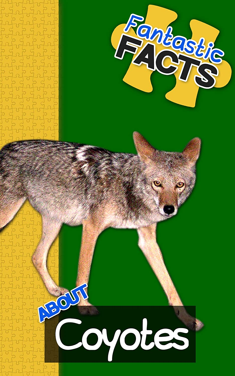 Coyotes-cover-1