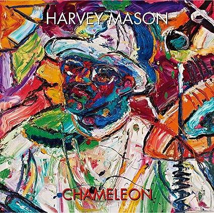 R Chameleon Amazon Chameleon - Amazon com