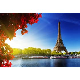 Paris wall decals for a really fast easy way to transform - Sticker mural tour eiffel ...