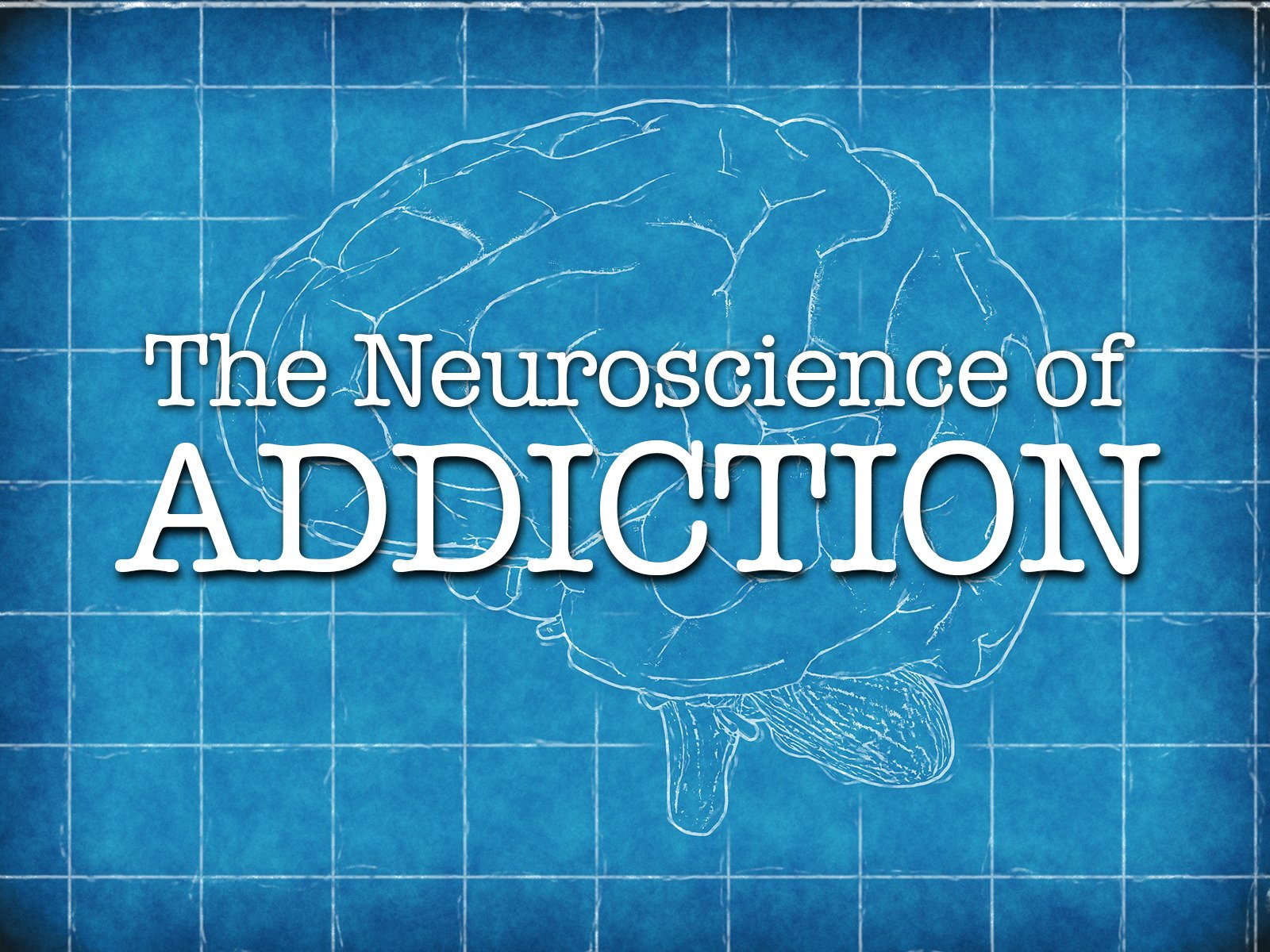 The Neuroscience of Addiction - Season 1