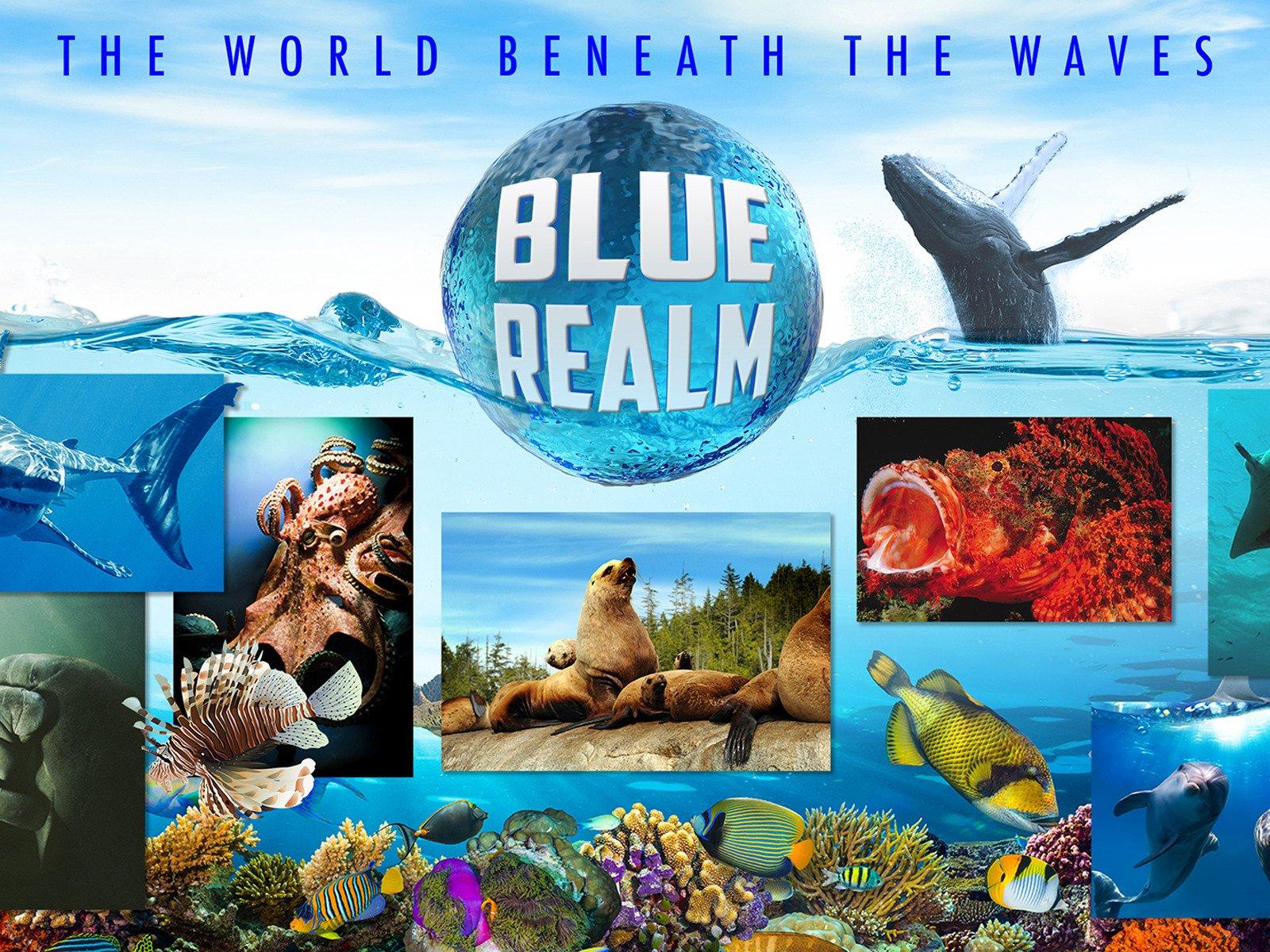 Blue Realm - Season 1