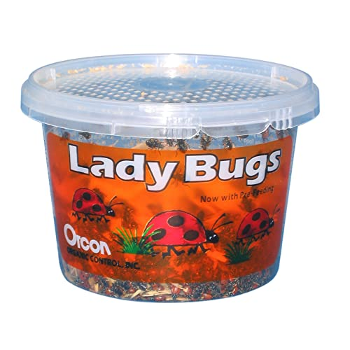 Orcon LB-C1500 Live Ladybugs Approximately 1500 Count