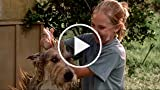 Because of Winn-Dixie - Trailer