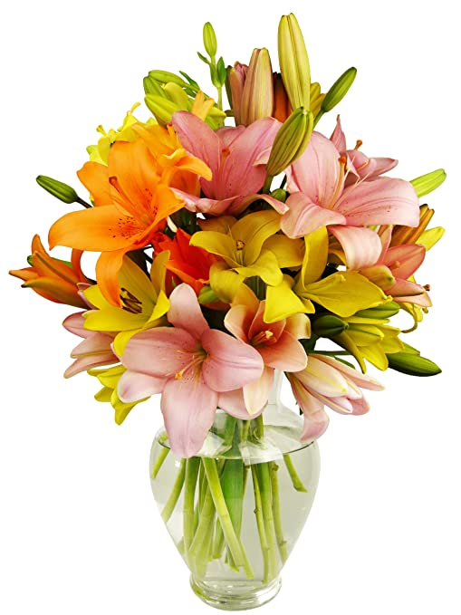 12 Stem Assorted Asiatic Lily Bunch | With Vase