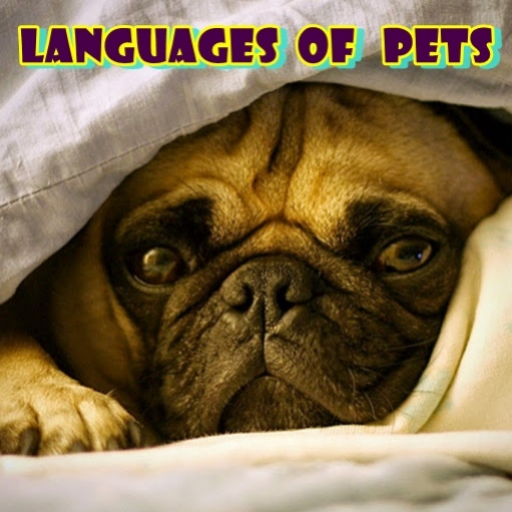 Languages Of Pets back-1026142