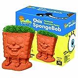 Chia SpongeBob Handmade Decorative Planter (Color: Orange)