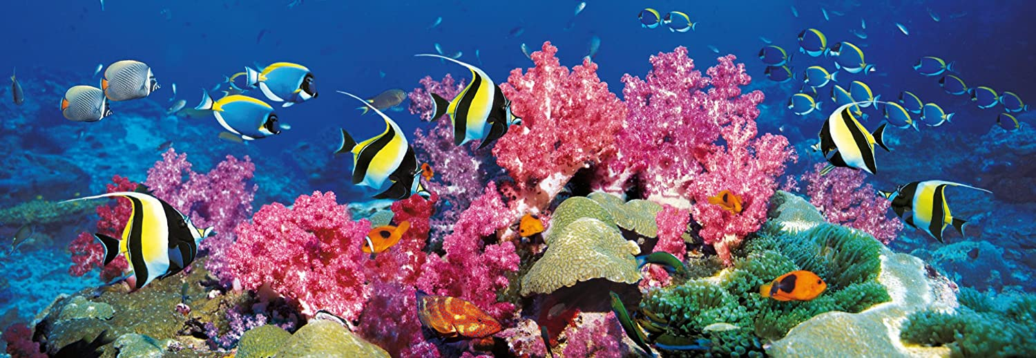 Barrier Reef puzzle Clementoni