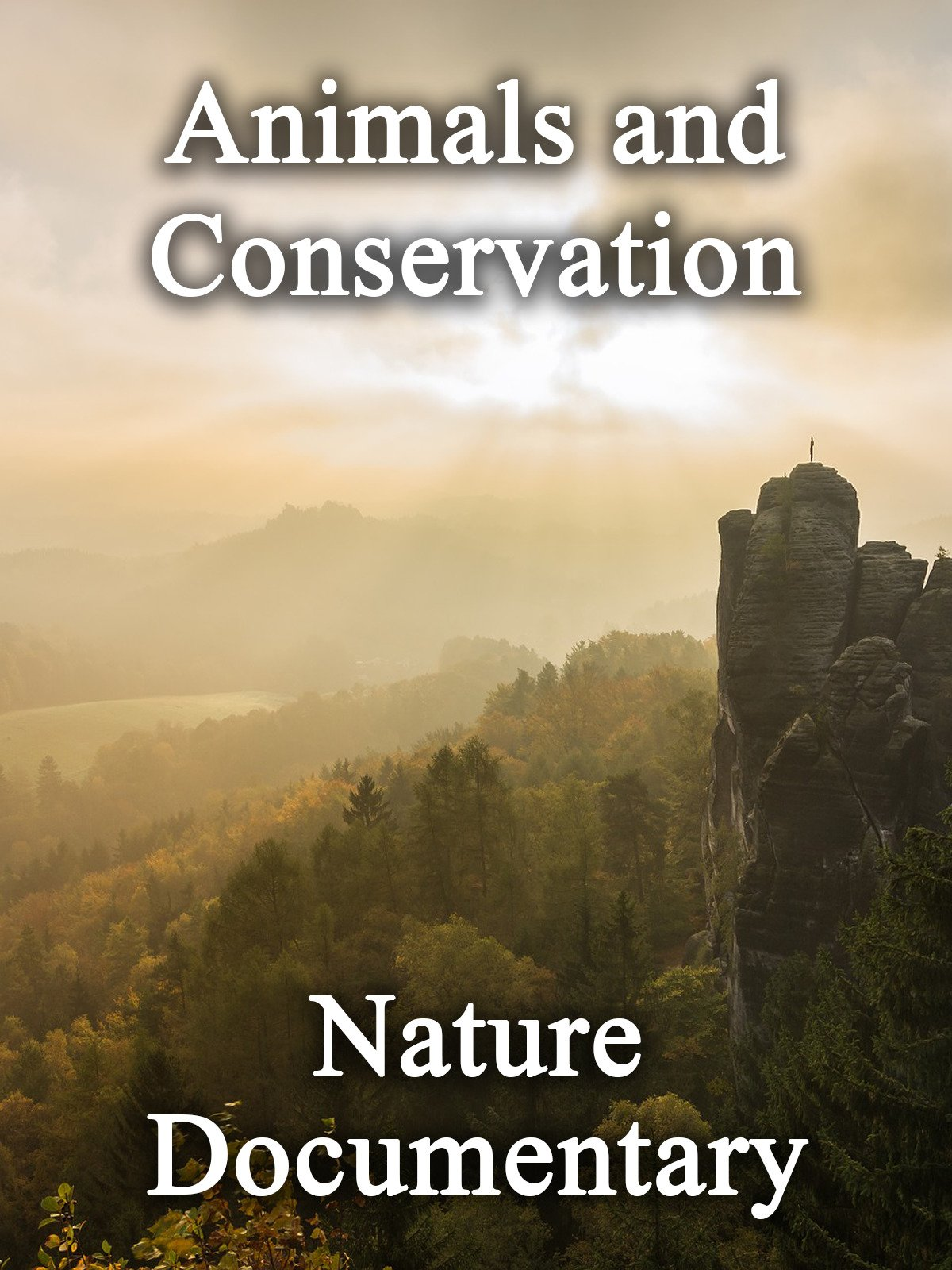 Animals and Conservation: Nature Documentary