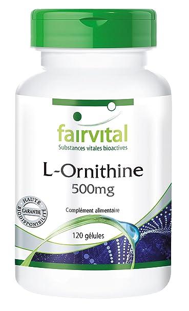 L-Ornithine 500mg - acide aminé - 120 gélules - Acides aminés pour la performance physique, le renforcement musculaire et la réduction de graisse