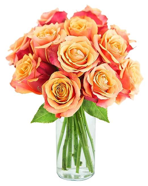 Long-stemmed Orange Roses | One Dozen | Vase