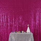 PartyDelight Sequin Backdrop 4FTX6.5Ft Fuchsia for Wedding Curtain, Party, Photo Booth. (Color: Fuchsia, Tamaño: 4X6.5)