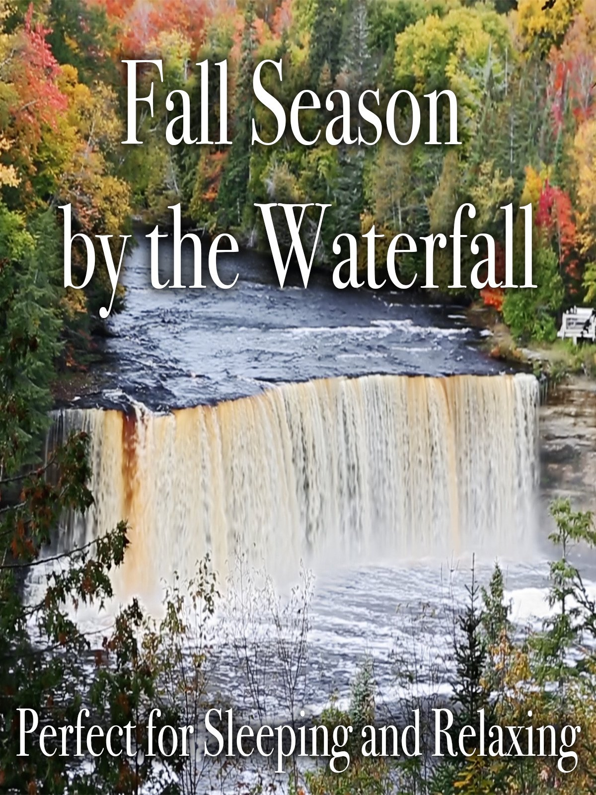 Fall Season by the Waterfall Perfect for Sleeping and Relaxing