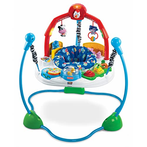 Best baby bouncers jumpers the old blue door for Door jumperoo